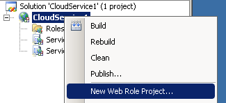 Add a web role project
